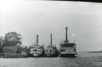 Riverboats were frequently chartered for picnic excursions on the St. John River. Here 3 are seen after depositing their passengers at a river wharf.