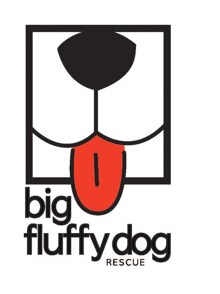 Big Fluffy Dog Rescue is being featured on the BBS Healthy Dog Blog! Click to read more about this Nashville, TN #dog #rescue! #dogrescue // BestBullySticks.com