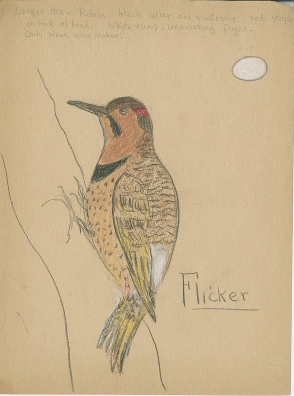 Flicker | saskhistoryonline.ca