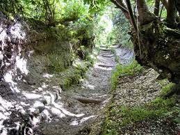Trekking Buceto