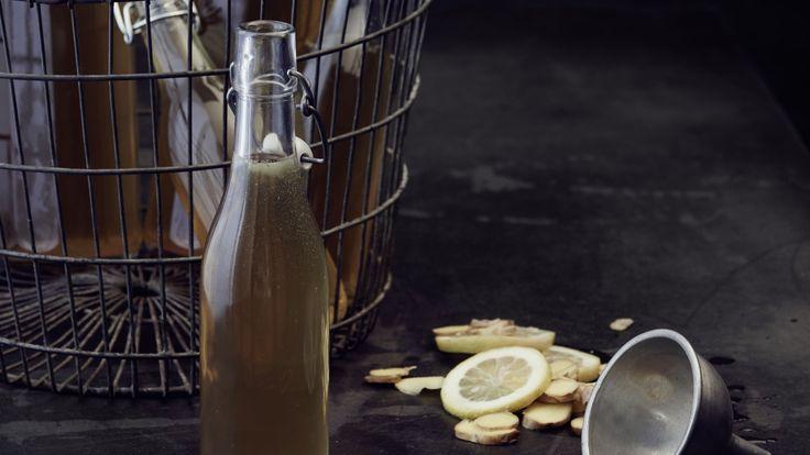 Bier aus Wasserkefir: Werden Kefirkristalle mit Wasser, Rohrzucker, Birnendicksaft, Ingwer, Zitrone und Trockenfrüchten angesetzt, entsteht Ginger Beer.