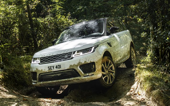 Download wallpapers Land Rover, Range Rover Sport, P400e, Plug-in Hybrid, luxury off-road vehicle, off-road test, white Range Rover, British cars, wood, mud