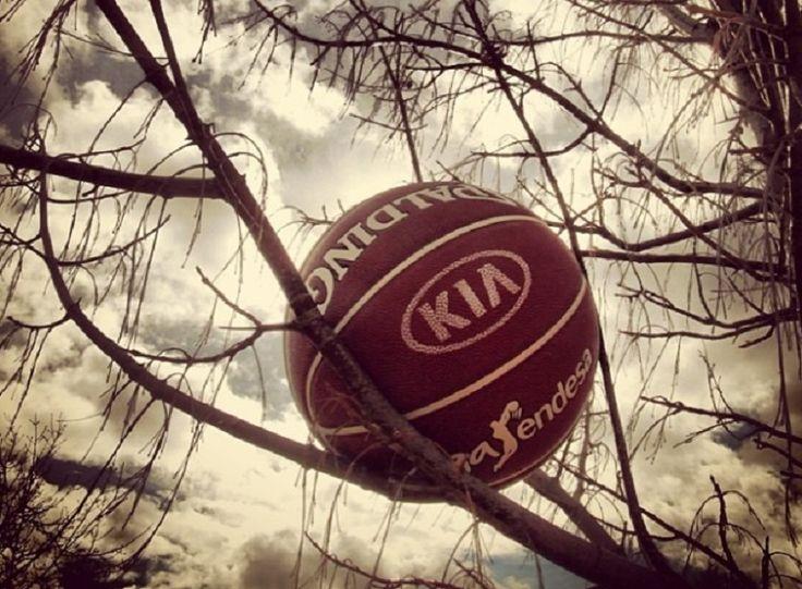 Publica tus fotos de baloncesto en KIAenZona.com #basketbol #basquetbol #kiaenzona #equipo #deportes #pasion #competitividad #recuperacion #lucha #esfuerzo #sacrificio #honor #amigos #sentimiento #amor #pelota #cancha #publico #aficion #pasion #vida #estadisticas #basketfem