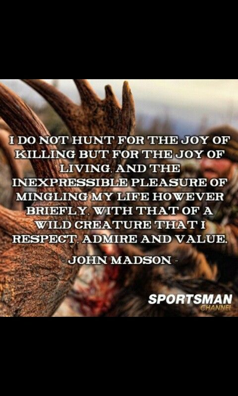 Hunting. Said very well. My husband would appreciate this. Very rarely does he enjoy hunting for the end result of a kill, and actually will not kill unless it meets strict requirements set by him.   It's all about enjoying the quiet. The peace. The outdoors. Respecting nature.