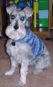Easy DOG SWEATER Crochet Pattern  Easy Cat Sweater Crochet Pattern: Dog Sweaters Patterns, Easy Crochet Dog Sweater, Crochet Dog Patterns, Crochet Patterns For Dogs, Crochet Dog Sweater Patterns, Crocheted Dog Sweater