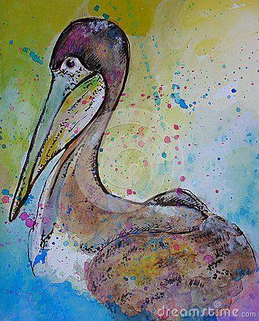 Pelican watercolor illustration
