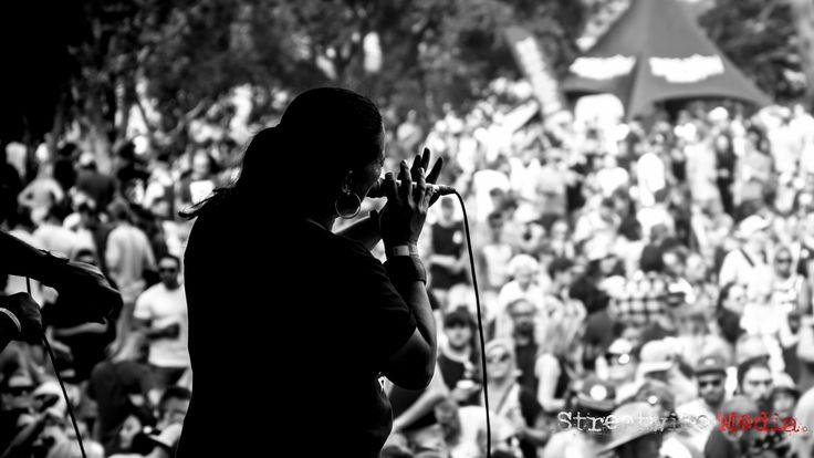 https://flic.kr/p/SvSh6o | George In The Park - Pt. Chevalier, Auckland 18/03/17 | Photo - Blake Jones