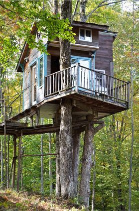 Smallest Tree House In The World 429 best cool tree houses images on pinterest | treehouses