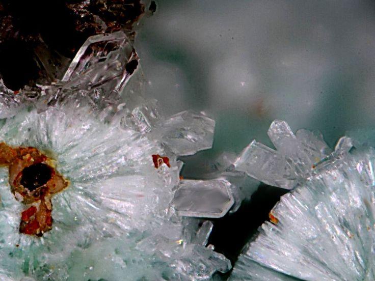 Aurichalcite, Barbara Mine, Sounion, Laurion (Lavrion), Attica, Greece. Fov 1,5 mm. Collection/Copyright: Ulrich Baumgärtl