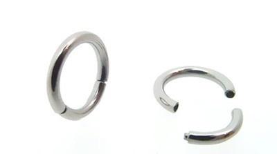 16G 1/4 Surgical Steel Segment Septum Ring