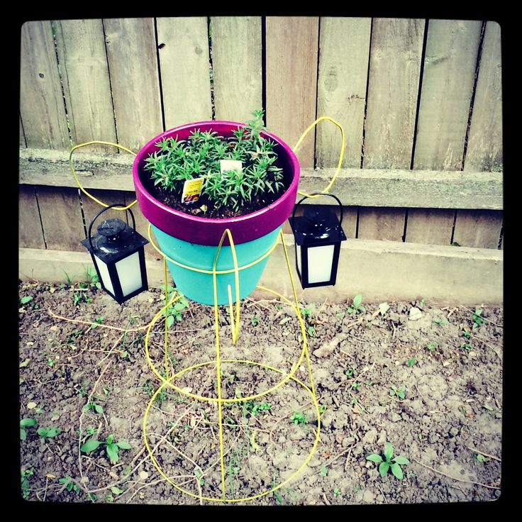 Diy plant stand! Spray painted upside down tomato cage ...