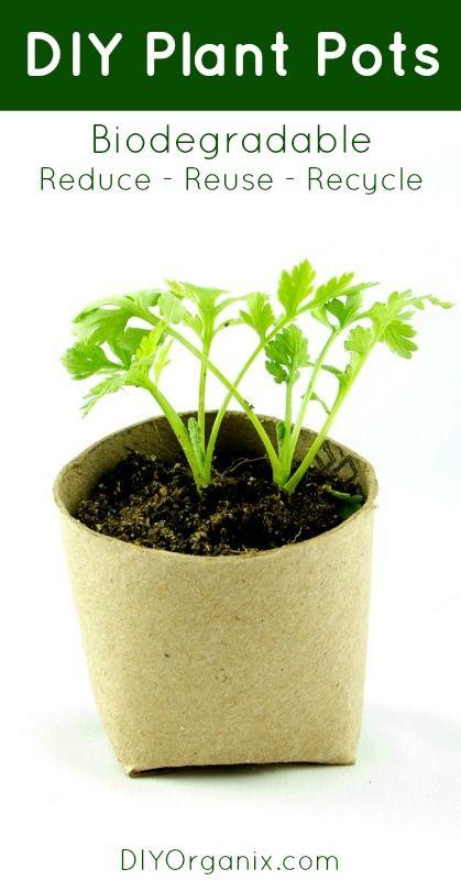 192 best Garden images on Pinterest | Vegetable garden, Balcony and ...