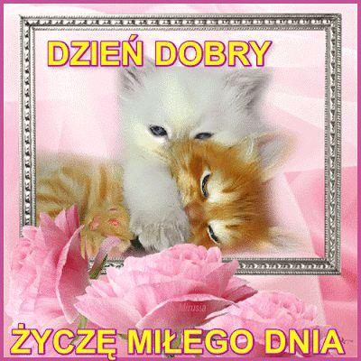 Milego-Dnia