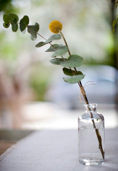 Single bloom in mason jar or bottle...Elegant and charming