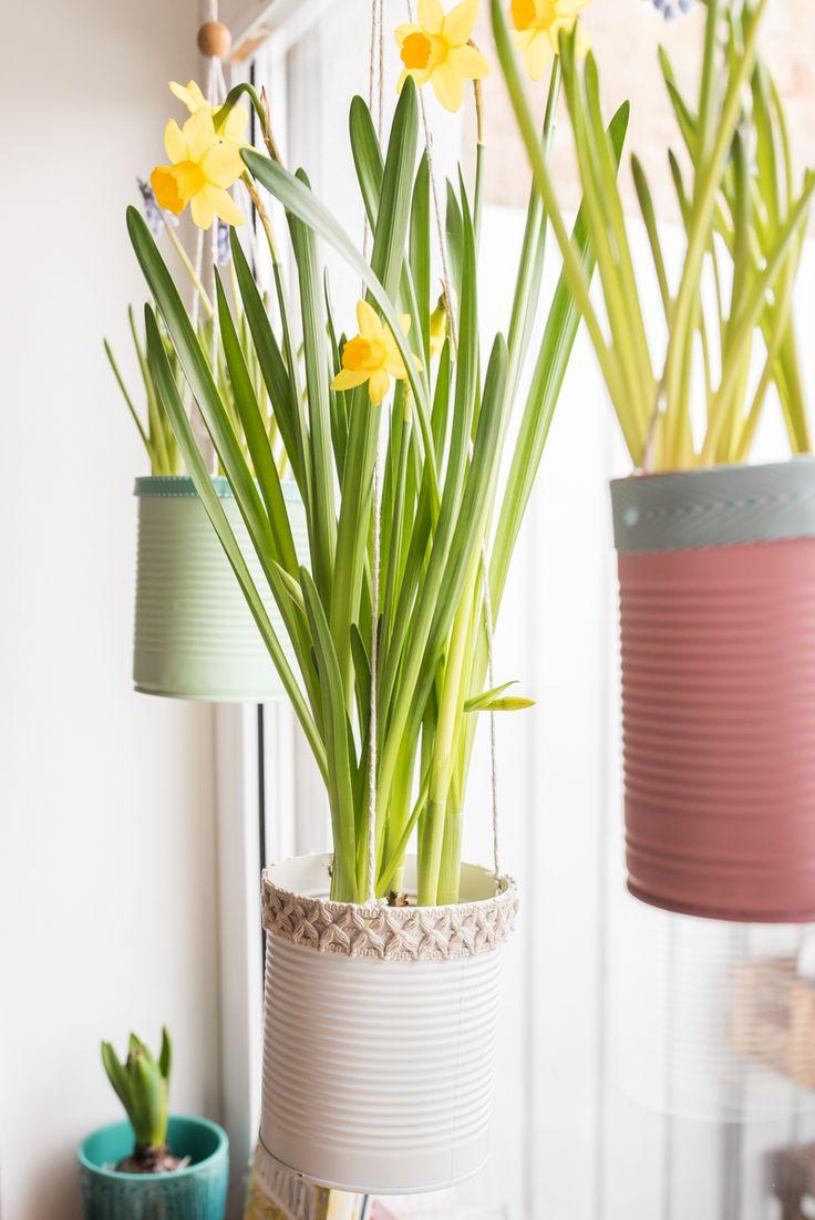 Fancy Fr hling am Fenster mit upcycling Blumenampeln