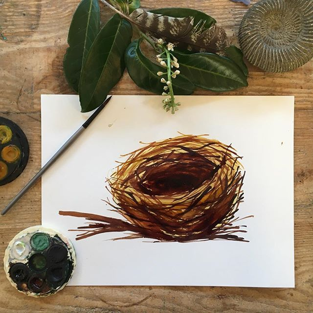 Nest watercolour painting using micador paints by Andrea Hamann (StrongsoutherlyArt)
