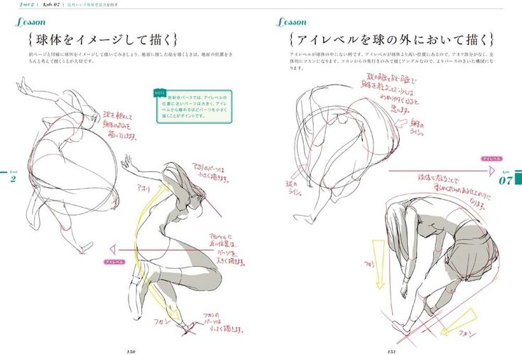 Amazon.co.jp: アニメーターが教えるキャラ描画の基本法則: toshi: 本