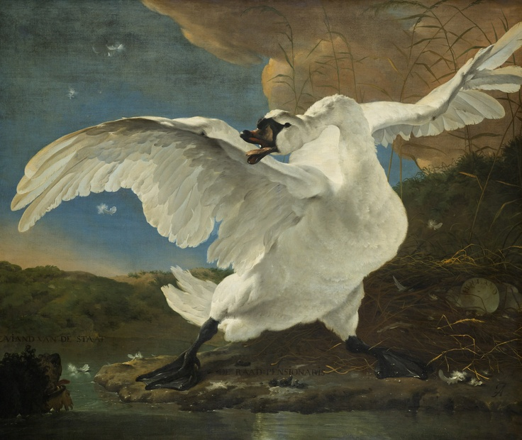 Only 5 more nights until you can enjoy The Threatened Swan by Jan Asselijn for real. In the meantime, from today our followers in the Netherlands will see this and 15 other artworks from our collection on dairy products of Albert Heijn one of the leading supermarkets in the Netherlands.