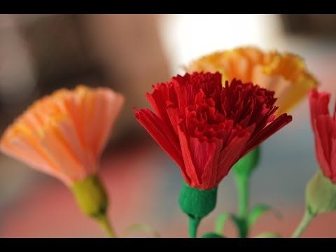 A great crepe paper carnation tutorial by Robert Mahar - using our doublette crepe! http://youtu.be/u00nX7NtxxE