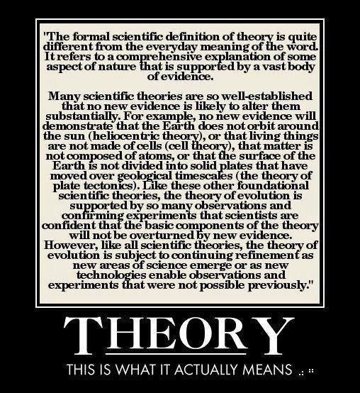 "When you say ""Evolution is JUST a theory,"" what I hear is ""I have NO idea what…"