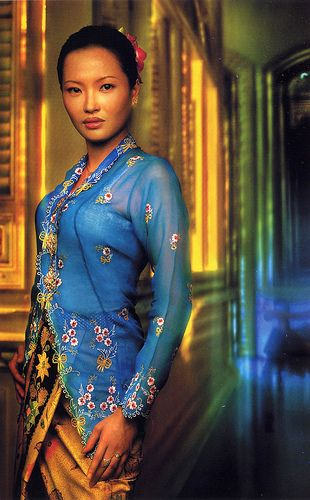 "malaysian Nyonya Kebaya: a traditional ethnic costume worn by Straits Settlement Chinese ladies, ""nyonyas"". The main difference from other kebayas is that, the material used for the top is sheer, ie. gauze cotton, voile or georgette. It is thus necessary to wear an inner cotton camisole which is called ""anak baju"". The top is hand-embroidered with beautiful motifs with emphasis at the collar, sleeves and hem of the jacket. The sarong (long skirt), is made of batik from Java."