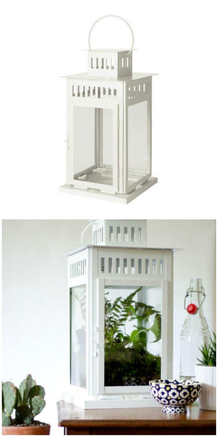 IKEA's Borby lantern can tun into a chic terrarium in this IKEA hack.