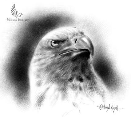 Hunter Eye (Pencil sketch ,using 4B and 6B shade pencil)