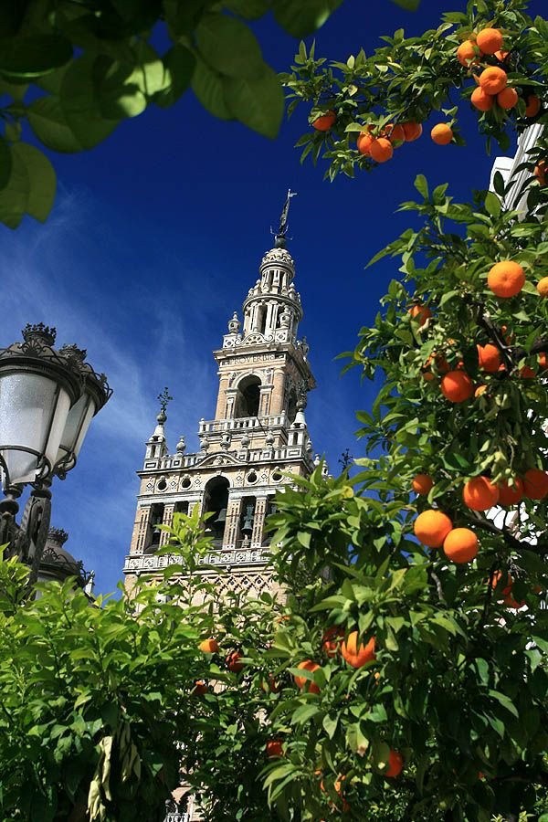 Sevilla - Andalusien                                                       …