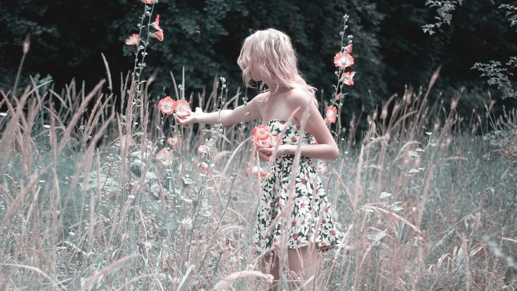 꽃을 수집 하는 여자, 자연, 여름, 드레스, 블 룸, 피튜니아, 꽃, 공장, 소녀, 스카이