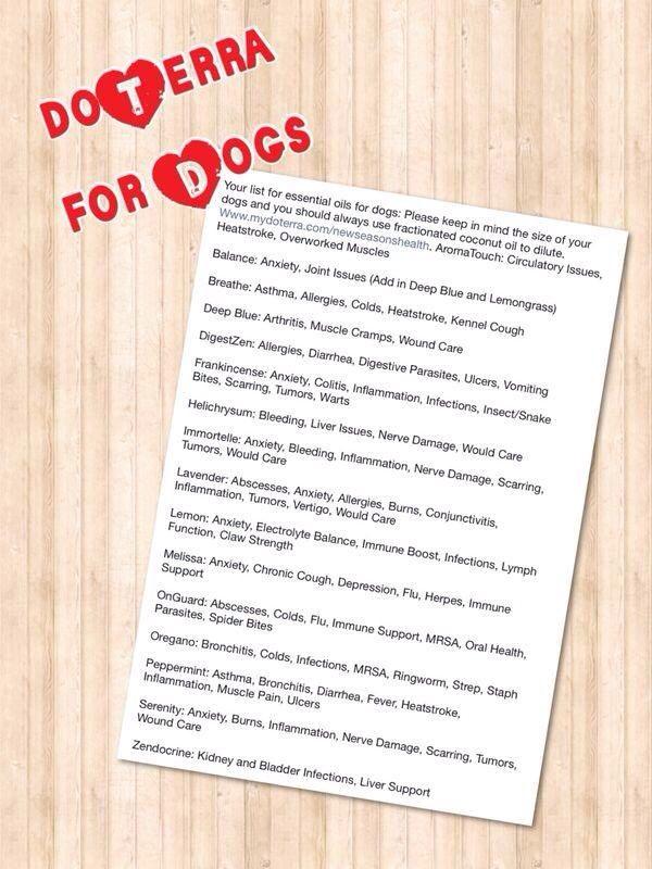 Natural Treatment For Vertigo In Dogs