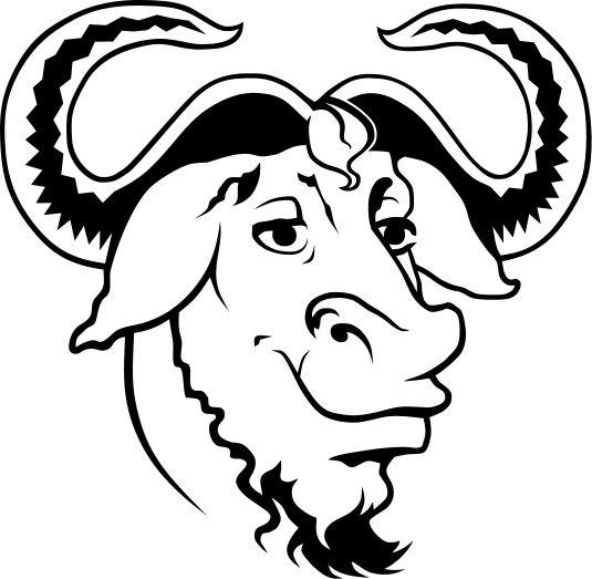 Mówiąc szczerze z tego artykuł nauczyłem się, że po za licencją CC są jeszcze inne licencje. Przykładem takiej licencji jest GNU FDL, ale jak sam artykuł mówi używanie go jest cięższe i bardziej kłopotliwe, dlatego korzystam właśnie z Creative Commons.