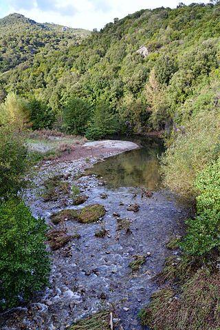 La Bravona fleuve côtier de Haute-Corse se jette dans la mer Tyrrhénienne. de la Punta di Caldane (1 724 m), sur la commune de Bustanico, à l'altitude 1 220 m, et à moins de 10 km de Corte, prend la direction de l'est-sud-est. et se jette dans la mer Tyrrhénienne à une douzaine de kilomètres au nord d'Aléria sur la côte orientale de l'île, sur le territoire de la commune de Linguizzetta, entre la Marine de Bravone et l'étang U Stagnolu au nord d'Aléria