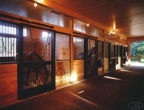 Stall Doors 12