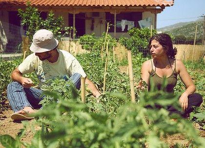 Greeks go back to the land