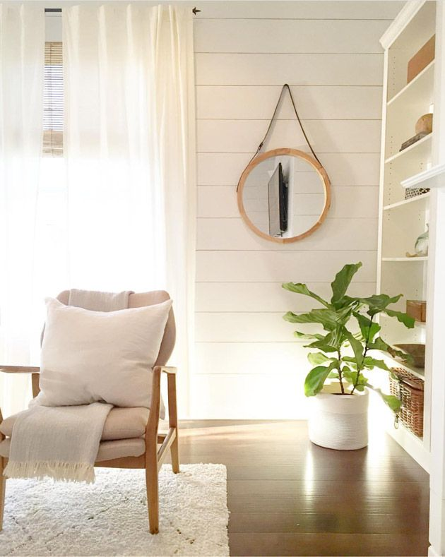 The Beauty of a Fiddle Leaf Fig