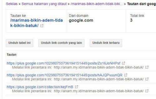 SS Backlink dari Google Plus