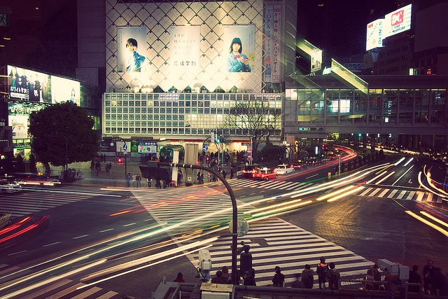 Shibuya, Tokyo in Japan: busiest intersection in the world - I would return to visit Japan in a heart beat!