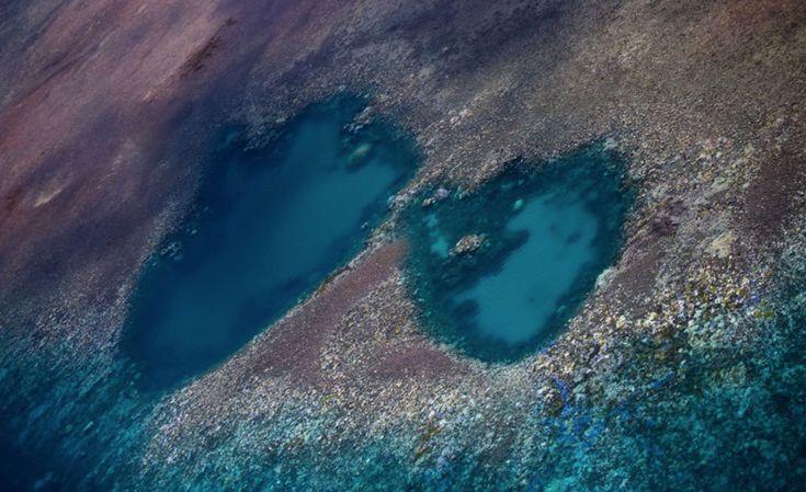 Blanchissement-coraux-2