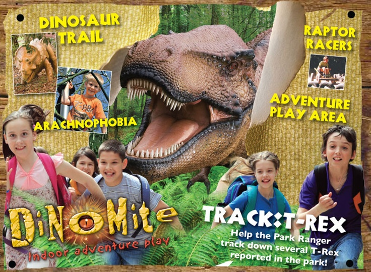 The Dinosaur Park in Norwich is a great day out for the family, and have an indoor play area 'Dinomite' for rainy days too. The slides in Dinomite are crazy and vertical - but the children seem to love them!