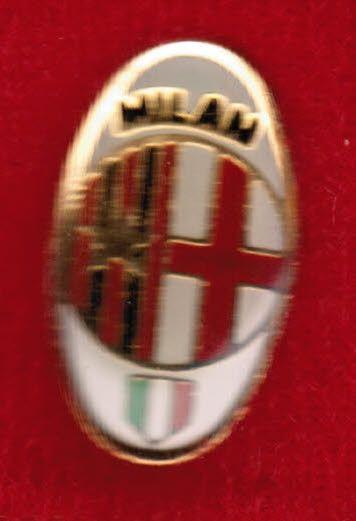 D6102/h*- Pins MILAN in metallo smaltato con cop.trasparente in rilievo,mm.12x18