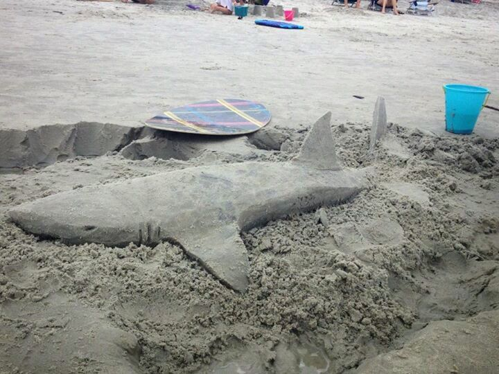Shark sand castle made by my brother-in-law...check out more  @A Bui Artistry on Facebook