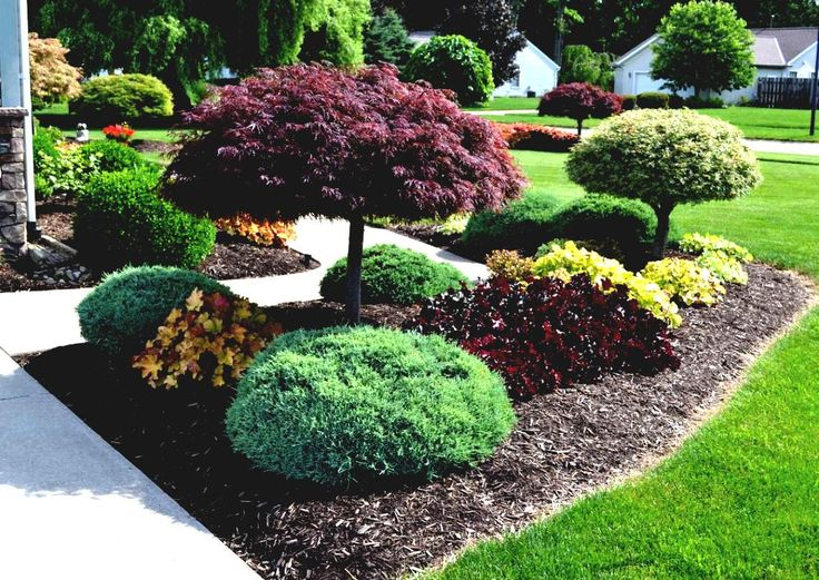 Ideas Front Yard Australia Landscaping Plans Shrubs Doors ...