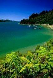 Marlborough Sounds, South Island, New Zealand