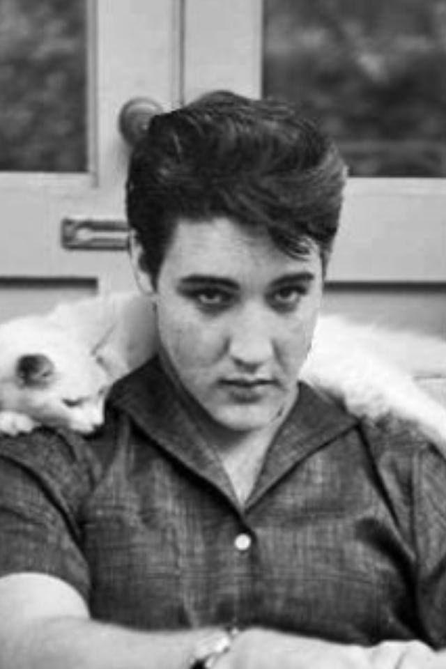 ♡♥Elvis Presley on a couch types while with a cat on his shoulder♥♡.  This just makes me love him even more.....