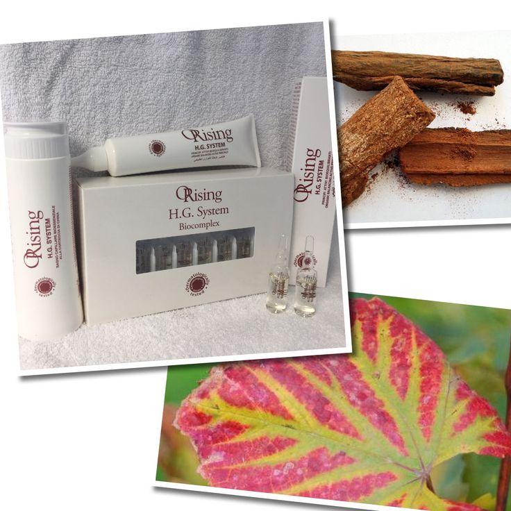 H.G.System til hårtap og tynt hår. Fantastisk 3 trinns serie med aktive økologiske ingredienser!🌿🍃
