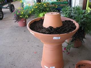Build a terra cotta bird bath planter