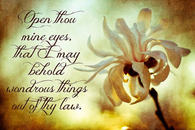 Psalm 119:18 ~ Gorgeous.  I have prayed this over my own life.  Pray it over yours as well!