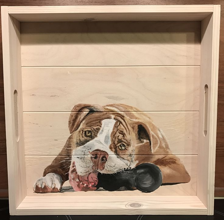 Bull playing, painted on a tray