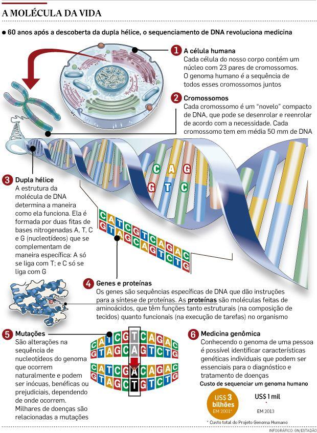 DNA - Pesquisa Google
