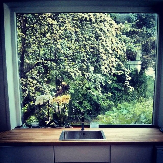 Our summer view from the kitchen